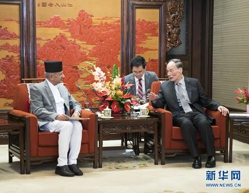 王岐山会见尼泊尔外长贾