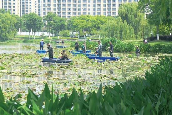 芜湖市神山公园水系大清洁