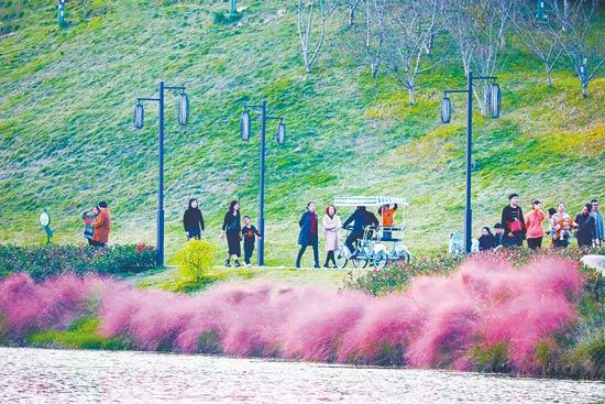 提升改造公园提高群众幸福指数