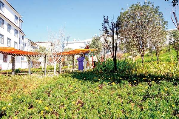 社区公园美如画 居民生活甜滋滋
