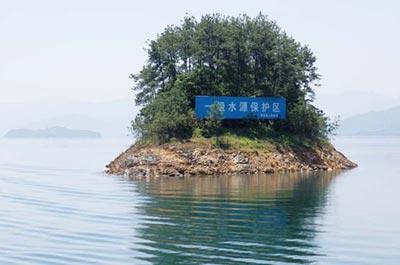 千岛湖位于浙江省淳安县境内,水域面积573平方公里,湖中有1078个岛屿,因此得名。湖区森林覆盖率高达95%,平均水深34米,能见度达14米,是国家一级水体,也是华东地区重要的战略备用水源。   千岛湖水质全国第一   5月上旬,由专家学者和包括本刊在内的媒体记者组成的调研组,前往农夫山泉千岛湖水源地实地调研。   调研组成员包括来自中国检验检疫科学研究院、中国标准化研究院、国家工商行政管理总局等机构的多名专家学者,以及《中国食品》杂志、新华社、《光明日报》、《中国青年报》、《中国消费者报》、《环境与生活