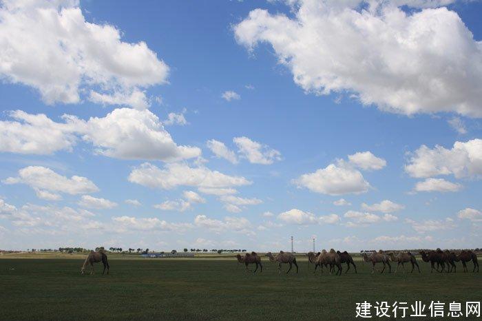 美丽的张北坝上草原