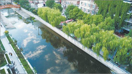 二仙居旱河全面提升生态环境质量
