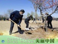 为人民种树,为群众造福